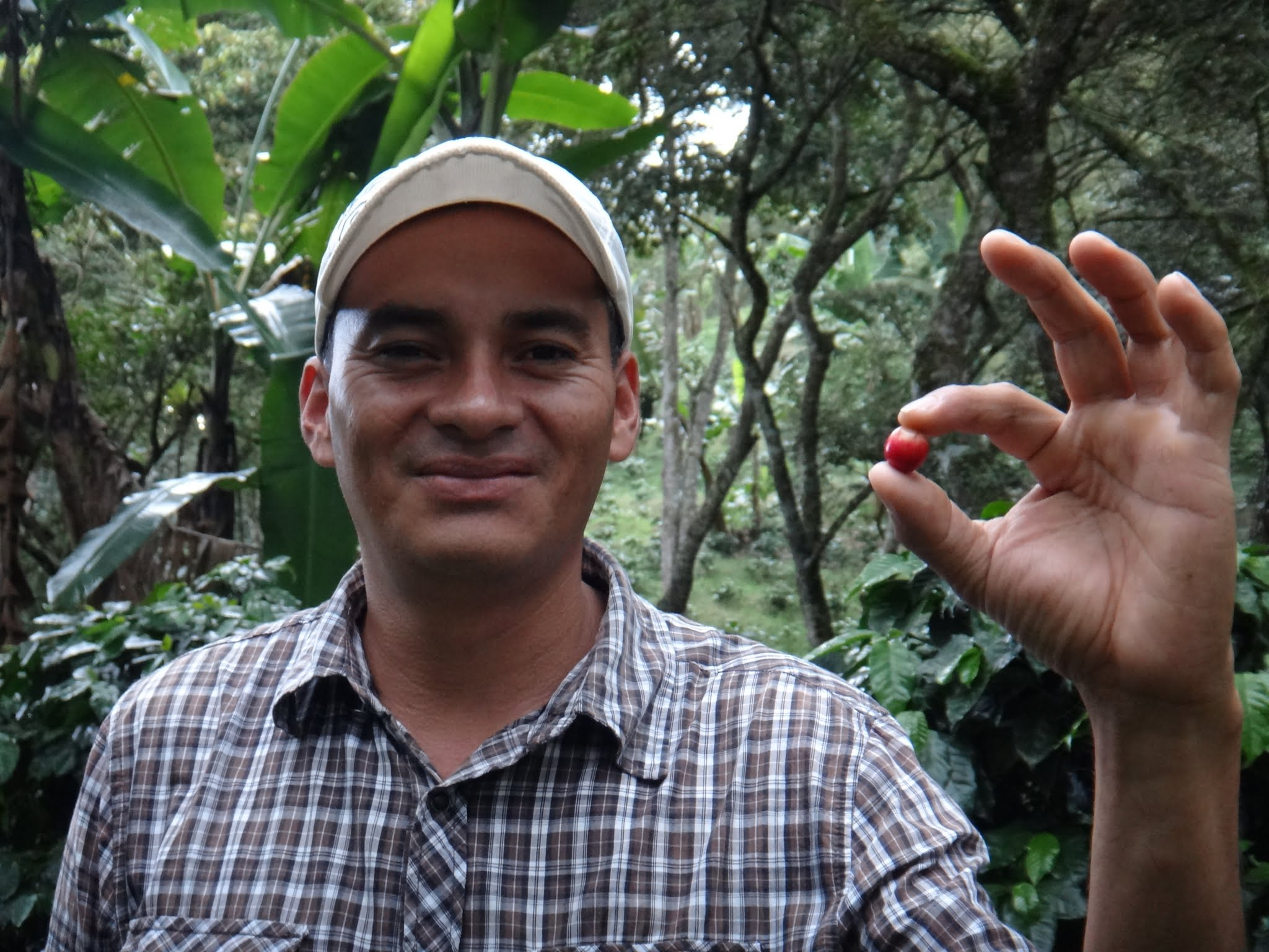 flor-del-pino-honduras-fairtrade-coffee-40