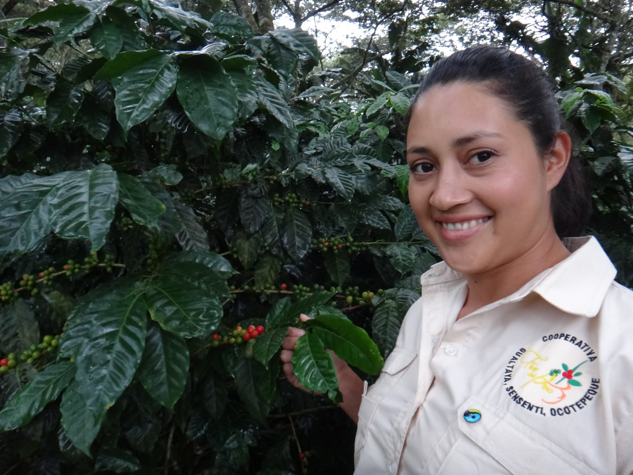 flor-del-pino-honduras-fairtrade-coffee-7