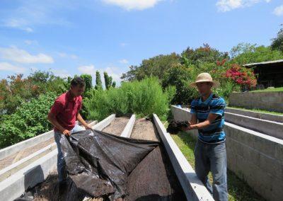 flor-del-pino-abonos-organicos-y-lombricultura-18