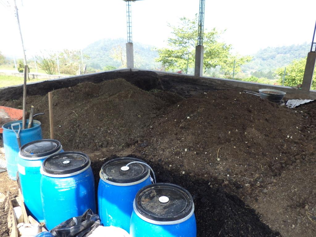 plant-de-abonos-organicos-flor-del-pino-2