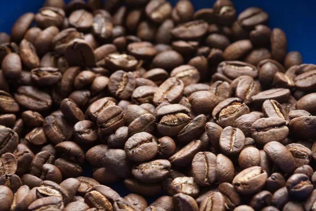 cafe-de-honduras-8