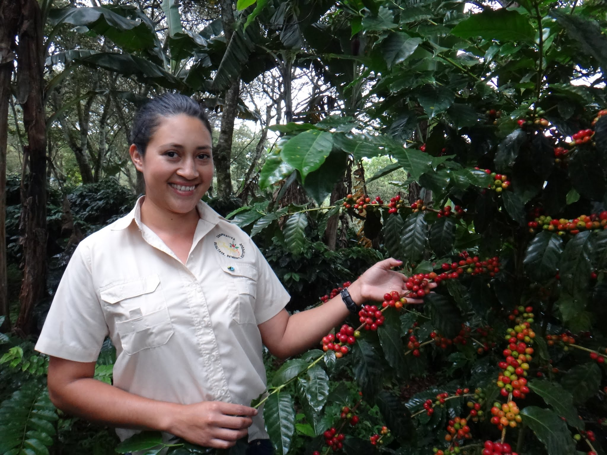 flor-del-pino-honduras-fairtrade-coffee-11