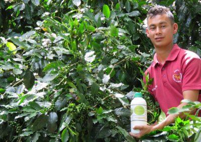 flor-del-pino-abonos-organicos-y-lombricultura-39